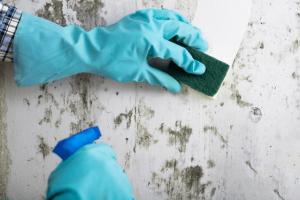 Prevenirea mucegaiului încă din faza de construcție