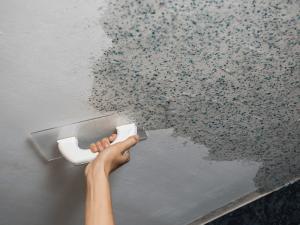 curatare mucegai de pe tavan