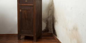 Eliminare mucegai din spatele mobilei